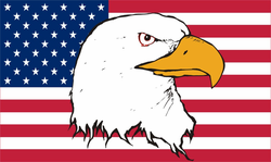 American Flag with Eagle Decal Sticker