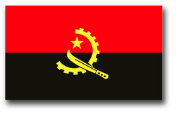 "Angola Flag 11.75"" Vinyl Transfer Decal"