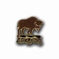 Army 10th Cavalry Regiment Military Pin