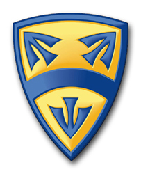 """Army 15th Support Brigade 10"""" Patch Decal"""