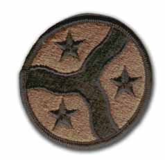 Army 278th Armored Cavalry Regiment Subdued Military Patch