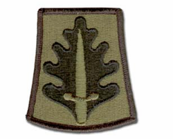Army 800th Military Police Brigade Subdued Military Patch