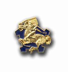 Army 9th Cavalry Military Pin