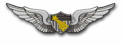 "Army Astronaut Wings 10"" Vinyl Transfer Decal"