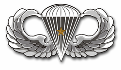 "Army Basic 1 Combat Jump Wings 3.8"" Vinyl Transfer Decal"