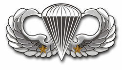 "Army Basic 2 Combat Jump Wings 11.75"" Vinyl Transfer Decal"