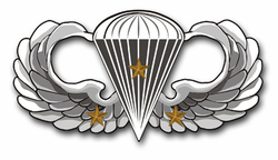 "Army Basic 3 Combat Jump Wings 11.75"" Vinyl Transfer Decal"