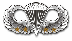 "Army Basic 4 Combat Jump Wings 5.5"" Vinyl Transfer Decal"