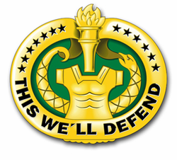 "Army Drill Sergeant Badge (Gold) 10"" Vinyl Transfer Decal"