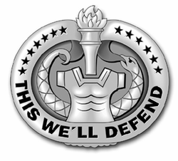 "Army Drill Sergeant Badge (Gray) 10"" Vinyl Transfer Decal"