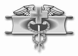 "Army Expert Field Medical Award 3.8"" Vinyl Transfer Decal"