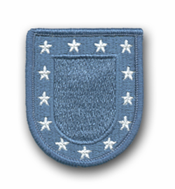 Army Flash With Stars Military Patch