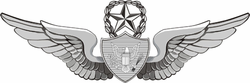 Army Master Crewman Wings Vinyl Transfer Decal