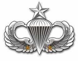 "Army Senior 2 Combat Jump Wings 3.8"" Vinyl Transfer Decal"