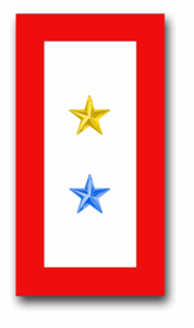 """One Gold Star And One Blue Star"" Service Flag 1.5"" x 2.8"" Decal"