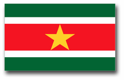 Suriname Flag Decal
