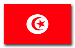 "Tunisia Flag 5.5"" Decal"