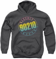 90210 youth teen hoodie Color Blend Logo charcoal