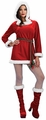 Adult Miss Noelle womens Christmas costume