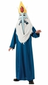 Adventure Time Ice King childs costume