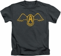 Aerosmith kids t-shirt Retro Logo charcoal