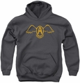 Aerosmith youth teen hoodie Retro Logo charcoal