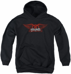 Aerosmith youth teen hoodie Winged Logo black