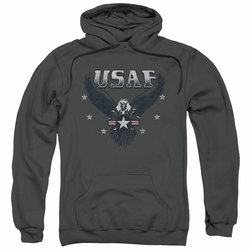 Air Force pull-over hoodie Incoming adult charcoal