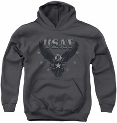 Air Force youth teen hoodie Incoming charcoal