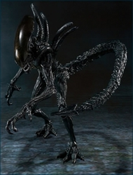 Alien Warrior action figure S.H.MonsterArts