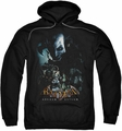 Arkham Asylum pull-over hoodie Five Against One adult black