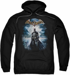 Arkham Asylum pull-over hoodie Game Cover adult black