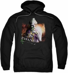 Arkham City pull-over hoodie Certified Insane adult black
