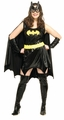 Batgirl Adult Full Cut costume