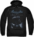 Batman Arkham Origins pull-over hoodie Perched Cat adult black