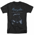 Batman Arkham Origins t-shirt Perched Bat mens black