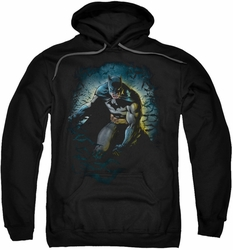 Batman pull-over hoodie Bat Cave adult black