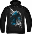 Batman pull-over hoodie Crazy Grin adult black