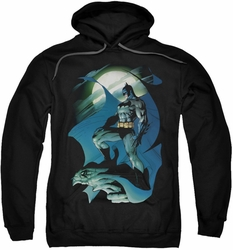 Batman pull-over hoodie Glow Of The Moon adult black