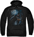Batman pull-over hoodie Light Of The Moon adult black