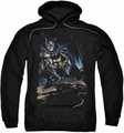 Batman pull-over hoodie Perched adult black