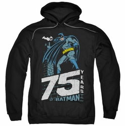Batman pull-over hoodie Rooftop adult black