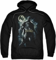 Batman pull-over hoodie The Knight adult black