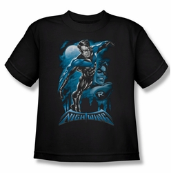 Nightwing youth teen t-shirt All Grown Up black