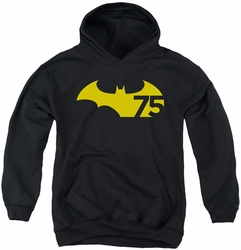 Batman youth teen hoodie 75 Logo 2 black