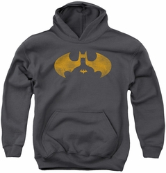 Batman youth teen hoodie Bat Symbol Knockout charcoal