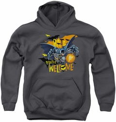 Batman youth teen hoodie Bats Welcome charcoal