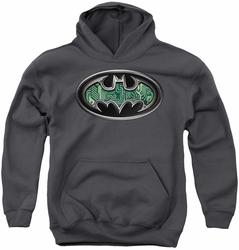 Batman youth teen hoodie Circuitry Shield charcoal