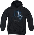 Batman youth teen hoodie Don't Mess With The Bat black