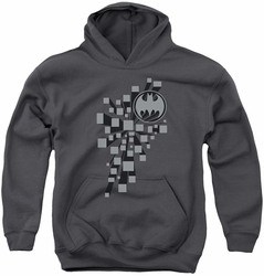 Batman youth teen hoodie Gotham 3D charcoal